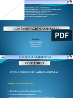 001 Presentacion Final Contaminacion Ambiental
