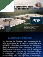 LAGUNA DE OXIDACION.pptx