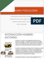 Ergonomia Psicologia