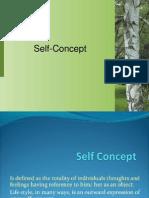 Final Self Concept
