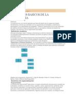 Conceptos Basicos de La Ergonomia