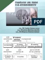 Metabolismo Del Envejecimiento en El Sn