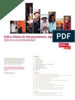 Índice Global del Envejecimiento 2014