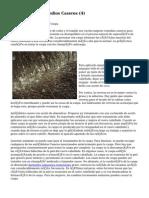 Article   Caspa Remedios Caseros (4)