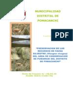 Proyecto Vicuñas Pomacanchi Ver 2