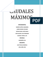 INFORME CAUDALES MAXIMOS
