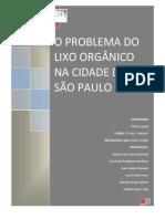 Artigo - O Problema Do Lixo Orgânico Na Cidade de São Paulo - Projeto Integrador UNIVESP - V-Final