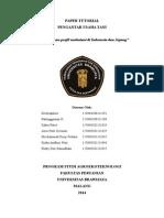 Paper Profil Ustan Tutor