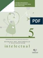 Retraso Del Desarrollo y Discapacidad Intelectual 2