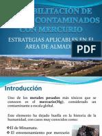 Rehabilitación de suelos contaminados por mercurio.pptx