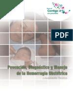Hemorragia Obstetrica. Prevencion y Diagnostico. Lineamiento Tecnico Para Su Manejo