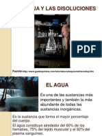 Agua y Disoluciones