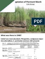 •Vegetation of Piermont Marsh, Erik Kiviat (Hudsonia)