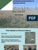 •Fish and Invertebrate Communities of Piermont Marsh – David Yozzo (Great Ecology)