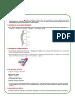 34.- Enfermedades a la columna y extremidades superiores.doc