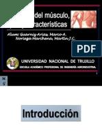 Cátedra II (Estructura Del Músculo, Tipos y Sus Características)