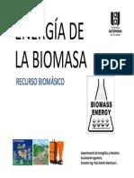 Biomasa_-_Recurso_de_la_Biomasa.pdf