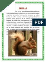 LA ARDILLA PARA ENTREGAR.docx