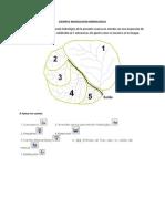 EJMP2 HMS.pdf