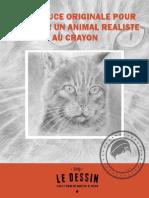 dessiner animal réaliste.pdf