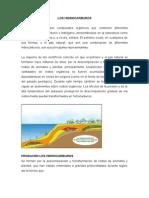 LOS HIDROCARBUROS.doc