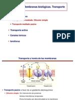 Tema 13b - membranas transporte  farmacia.pdf