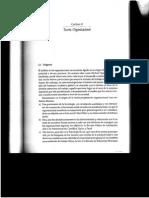 Gestión Organizacional-Capítulo 2.pdf