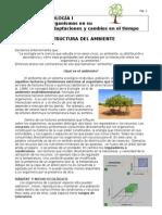 estructura-del-ambiente.doc