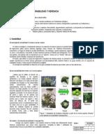 2º - Guía estudio Variabilidad y herencia.doc