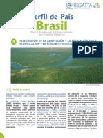 ficha_pais_brasil.pdf