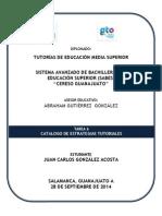 Catálogo de estrategias tutoriales_2.docx