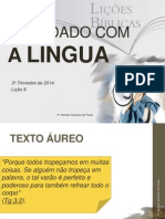 ocuidadocomalingua-140820121658-phpapp01.pptx