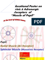 Pharma of Pupil Muscles