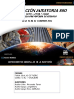 Presentación Auditoria 2014 SSO.pdf