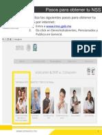 Tramita tu NSS en línea.pdf
