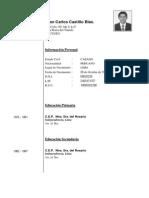 Vitae Juan Carlos Castillo Blas.pdf