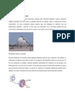 65023965-Recipientes-Esfericos-a-Presion.docx