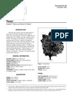 carilla.pdf