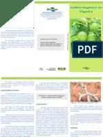 embrapa figueira organica.pdf