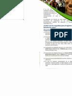 Requisitos SENAPI.pdf