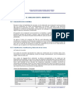 Cap_12-_SBX_Costo_Beneficio.pdf