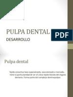 DESARROLLO DE LA PULPA DENTAL.pptx