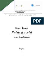 Suport Curs Pedagog Social