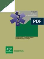 RCP basica SAS.pdf