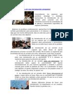 3 características de una introducción.doc