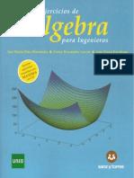 Problemas Resuelto Algebra.pdf