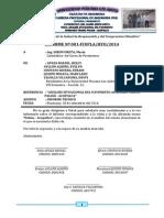 1 ESTADO SITUACIONAL DE LA CARRETERA PALIAN - ACOPALCA FINAL.docx