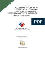 Estudio_de_competencias_laborales_y_mediciones.pdf