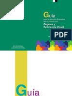 00655_673Guia__atencion_educativa_deficiencia_visual.pdf