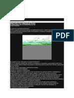 proyecto productivo e innovacion tecnica.docx